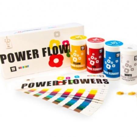 Barwniki do czekolady Power Flowers NON AZO - zestaw 4 szt.